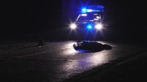 Stał na środku drogi, zginał pod kołami samochodu