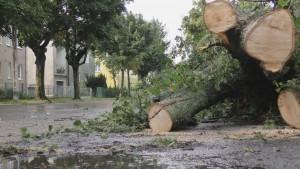 Nawałnica przeszła przez powiat braniewski