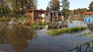 Działkowcy załamani. Woda zniszczyła uprawy, zalała altany, sprzęt…
