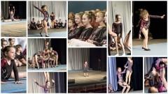 Gimnastyczki z Miejskiego Ośrodka Sportu zaprezentowały się przed braniewską…