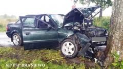 Śmiertelny wypadek w pobliżu miejscowości Cieszęta. Nie żyje kierowca…