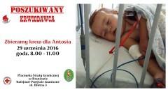Oddaj krew dla Antosia