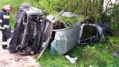 Pijany kierowca mitsubishi uderzył w drzewo