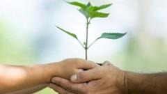 Czy ekologiczna i bezzapachowa kompostowania jest możliwa? Tak! Opinie…