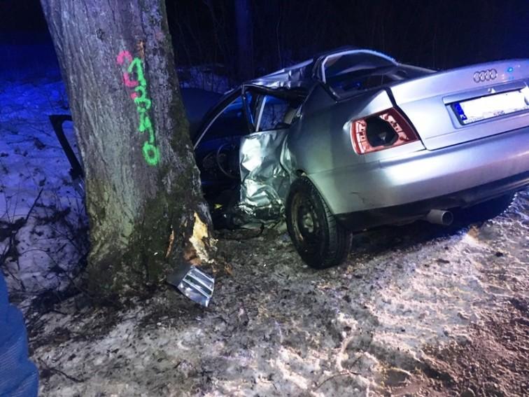 Audi uderzyło w drzewo, kierowca trafił do szpitala