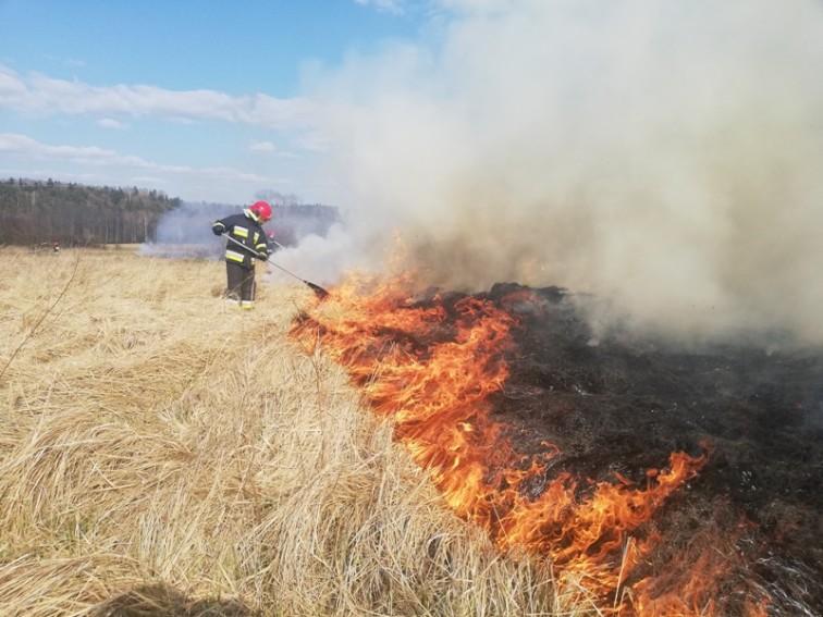 Pożary traw w powiecie braniewskim
