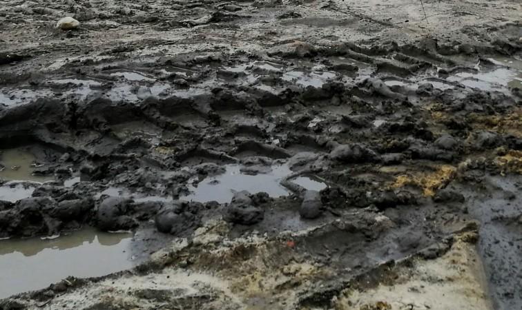Policja ostrzega: Nawet 1500 zł za zanieczyszczenie drogi publicznej