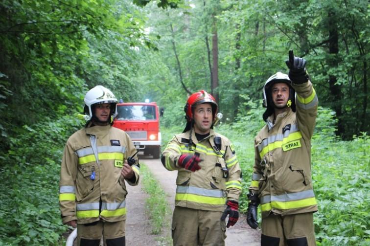 Strażacy ćwiczyli na wypadek pożar lasu