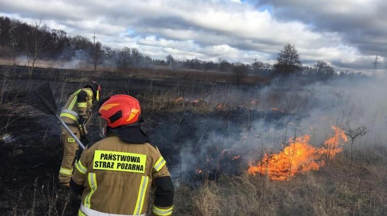 Pożar na ul. Łąkowej. W pobliżu ogródków działkowych paliła się…